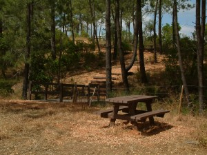Parque Merendas 2